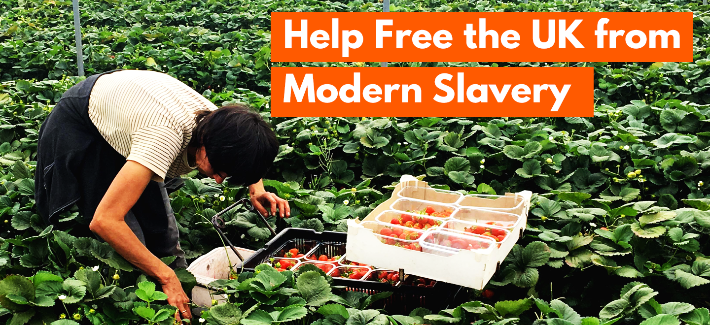 Modern slavery is a serious crime that violates human rights